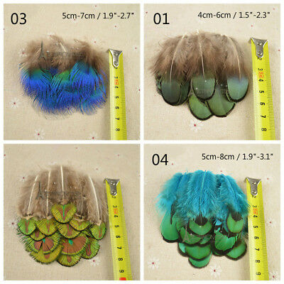 50 X Pheasant Tail Peacock Feather Trim Hem DIY Craft Decor Headwear Carnival