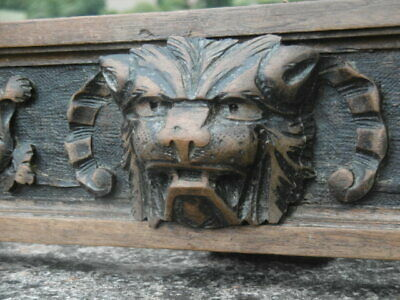 SUPERB 19thc GOTHIC OAK PANEL WITH LION HEAD CARVED CENTRALLY