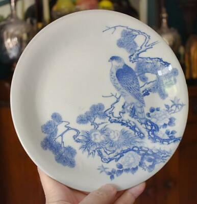 S/6 Antique Japanese Export Imari Porcelain Blue White Bird Floral Tree Plates