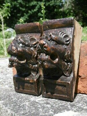 SUPERB Pr 18thc GOTHIC OAK CARVED LION CORBELS