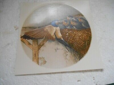 """1990S  6""""  Diameter Smooth Surface Water Transfer Of Swallow Feeding Young"""