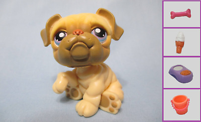 Littlest Pet Shop Lot Dog Bulldog 135 and Free Accessory Authentic Lps