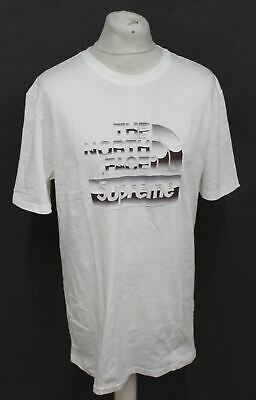 4eeb5ef0c SUPREME X THE North Face Metallic Logo T Shirt White Size Large SS18 ...