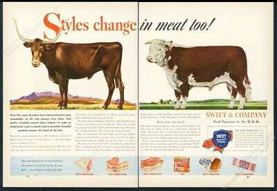 """20x28 1904 /""""Typical Cows/"""" Vintage Style Classic Cow Identification Poster"""