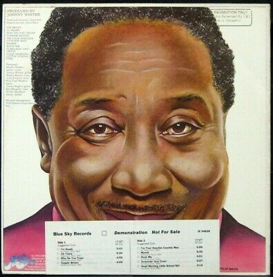 MUDDY WATERS 'I'm Ready' Never played 1978 white label Promo LP