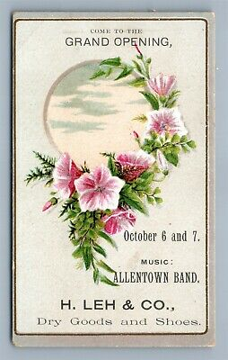 VICTORIAN TRADE CARD H.LEH & CO. DRY GOOD & SHOES ALLENTOWN PA antique
