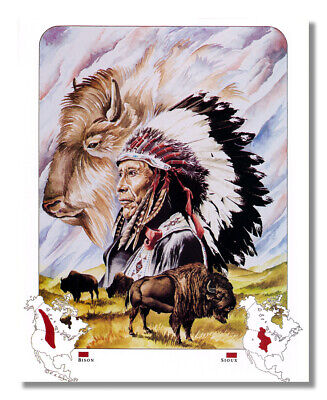 Native American Indian Map for the Sioux Tribe Wall Picture 8x10 Art Print