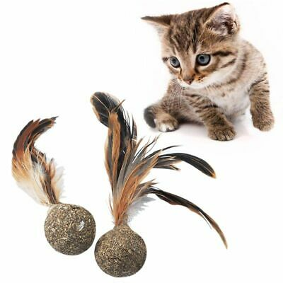 Soft Catnip Toys Soft Feather Cat Toy Ball Treats Interactive Kitten Toy Healthy