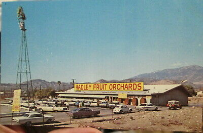 c1960s Hadley Fruit and Nut Orchards on Route 10 Cabazon California CA postcard
