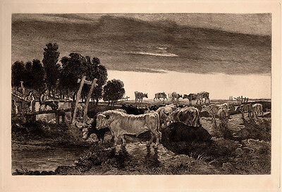 "FRAMED JAMES WARD Antique 1800s Etching ""Cattle Grazing in Regent's Park"" COA"