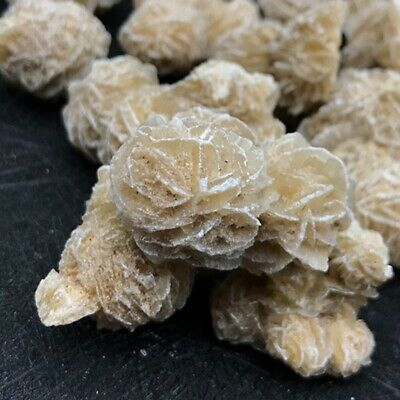 Rare Natural Desert Rose Selenite Crystal Stone Flower Table Desk Decor Specimen