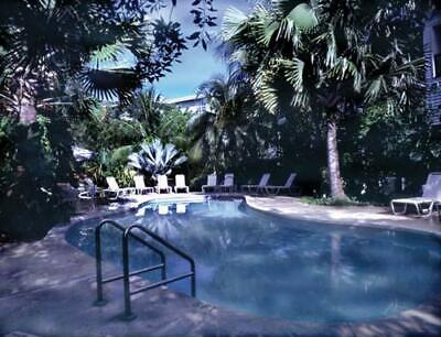 Coconut Mallory, Key West, FL ~ 2 Bedroom Biennial Odd Year Use - 2019 First Use