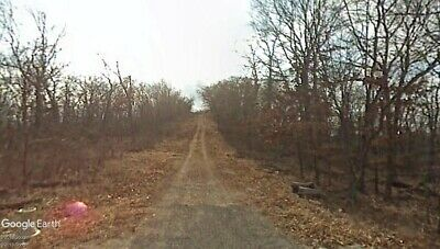 1.51 Wooded Acres with a View. Holiday Island, AR - NO RESERVE!
