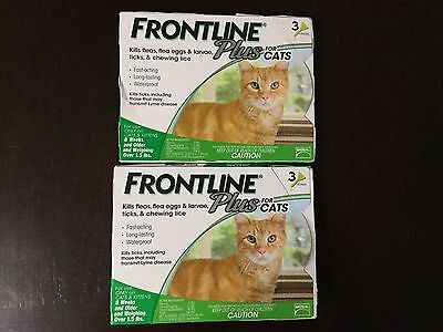 Frontline Plus Flea And Tick Control For Cat Over 1.5 Lb 6 Months Supply- Usa