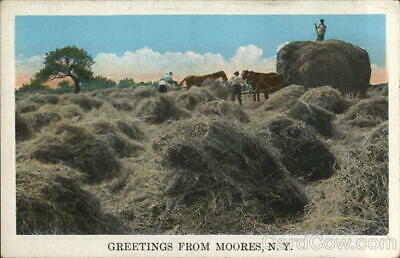 Mooers,NY Greetings From Moores Tichnor Clinton County New York Postcard Vintage