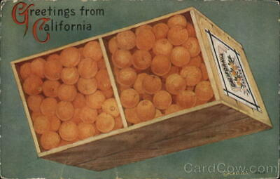 Fruit Greetings from California Antique Postcard M. Pei Vintage Post Card