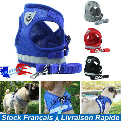 Dog Harness for Small Medium Dog Nylon Mesh Puppy Cat Harnesses with Lead Leash