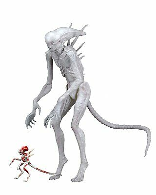 "Alien Covenant 7"" Neomorph Action Figure New Creature by Neca"