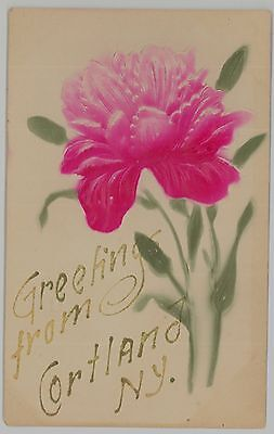 c1907 Greetings from Cortland New York NY floral and glitter postcard