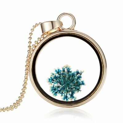 Fashion Real Dried Flower  Round Glass Locket Pendant Necklace Women Jewelry New