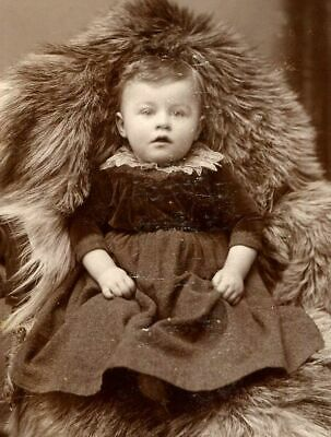 ANTIQUE CABINET PHOTO SWEET VICTORIAN BABY w VELVET & LACE DRESS HANOVER PA
