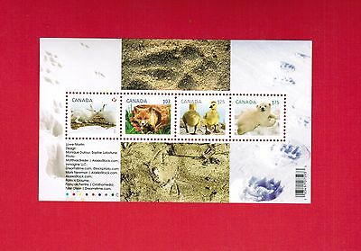2011  # 2424b  VFNH TIMBRES CANADA  MINI SHEET STAMPS BABY WILDLIFE  M17