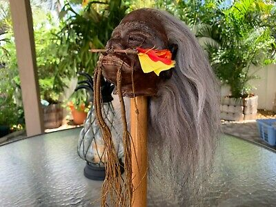 Gray Haired  Jivaro Shrunken Head -Tsantsa