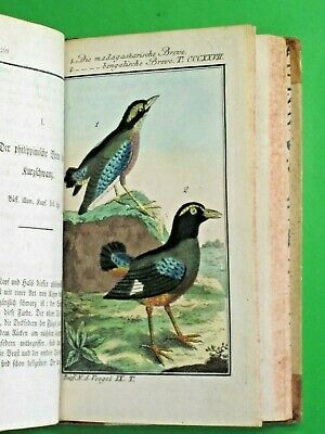 Buffon Bird book of 1790 with 34 hand colored engravings of Starling-like Birds