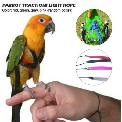 Parrot Harness And Leash Flying Anti-bite Traction Rope Bird Outdoor Training
