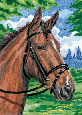 Royal & Langnickel Mini Colour Pencil By Number Kit: 5x7 Horse