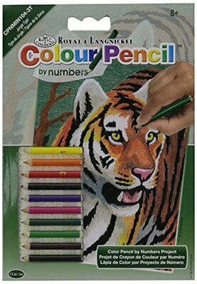 Mini Colour Pencil By Number Kit 5X7-Jungle Tiger
