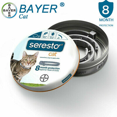 Bayer Seresto Collar for Cat (All Sizes),8 Month Protection, Flea & Tick Control