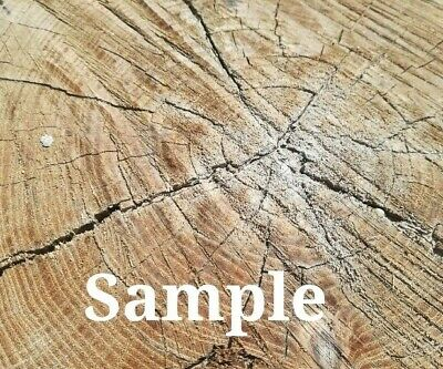 Digital Photo Art Image Wallpaper Own Picture Amazing Wooden Slice