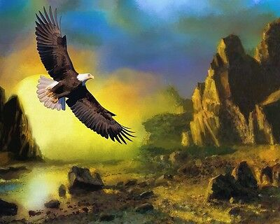 """perfect 30x30 oil painting handpainted on canvas """"eagle,landscape""""807"""