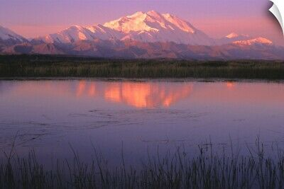 """Mt McKinley Relfected in Tundra Pond Denali NP AK"" Wall Decal"