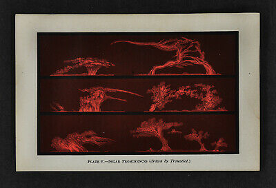 1897 Antique Print Solar Prominences by Trouvelot Sun Flares Telescope Astronomy