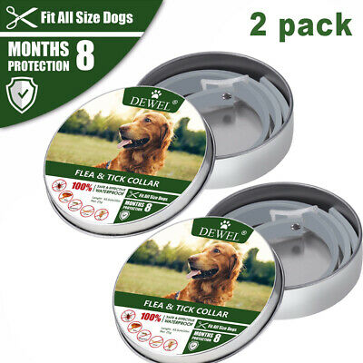 Dewel 2Pack  Flea and Tick Control Collar for Dogs,8 Month Protection Adjustable