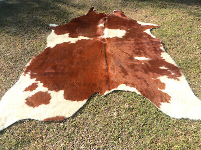 UNIQUE LARGE BROWN Cowhide Rug natural Cowhides Rugs Cow Hide Skin Hides E3816