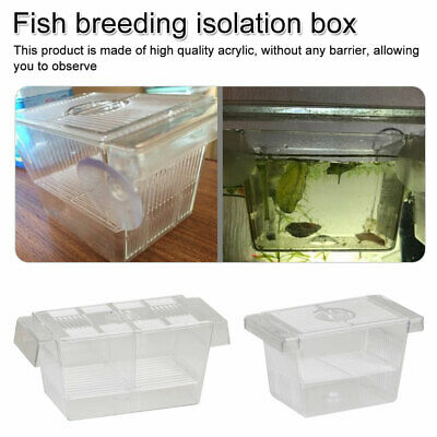 Incubator Box Breeder Fish Breeding Tank Isolation Hanging Aquarium Accessories