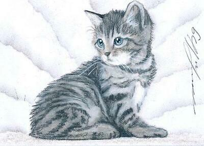 ACEO original pastel drawing tabby kitten cat by Anna Hoff