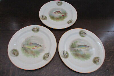 Set Of 3 antique painted plates depicting wild salmon fishing Trout specimens