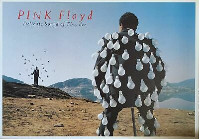 Pink Floyd Delicate Sound Of Thunder Poster 24 X 34