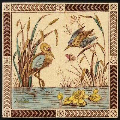 TH2904 Very Rare Aesthetic Movement Nature Study Pond-Life Print Tint Tile 1899