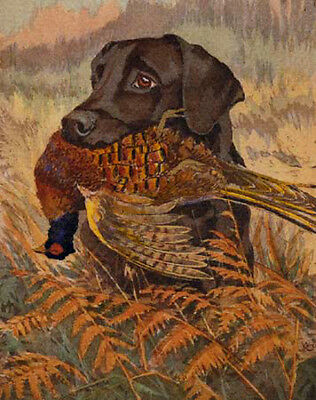 """perfect 24x36 famous oil painting handpainted on canvas""""hunting dogs""""N4167"""