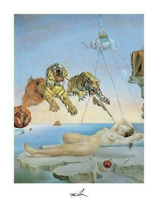 Salvador Dali Dream Caused By A Bee Flight Poster 11 x 14
