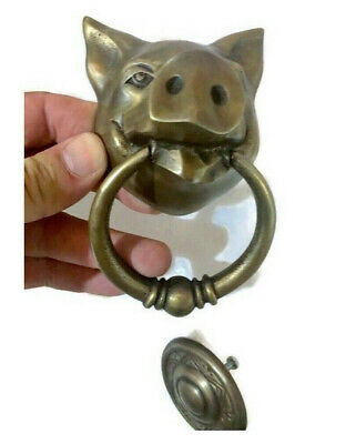 "small 3 "" Solid heavy pure Brass Door Knocker PIG Head ring pull in mouth B"
