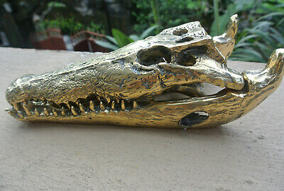 small Crocodile skull solid brass heavy decoration hand made 230mm polished B