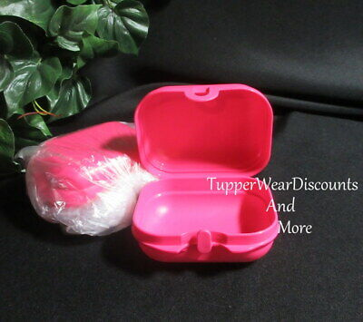 Tupperware New Packables Set 2 Mini Oyster hinge Snack keeper Pink