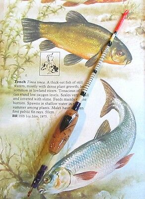 One Hand-Crafted Lancashire Tench Float