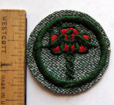 Girl Scout 1936-1938 PUBLIC HEALTH BADGE Caduceus Trefoil Doctor Medic Patch